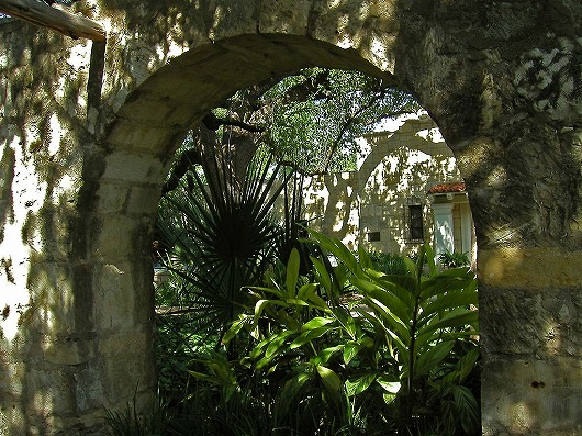 s-Alamo_224.jpg