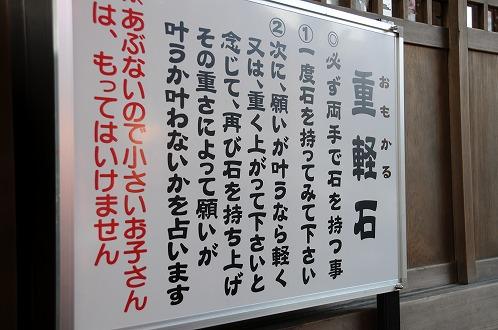 s-DSC_8379.jpg