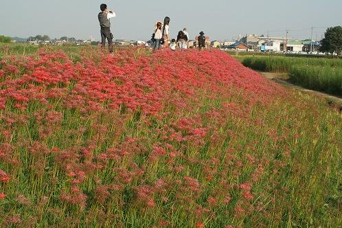 s-愛知県内 (19).jpg
