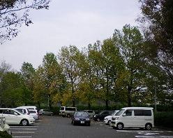 s-SANY0333.jpg